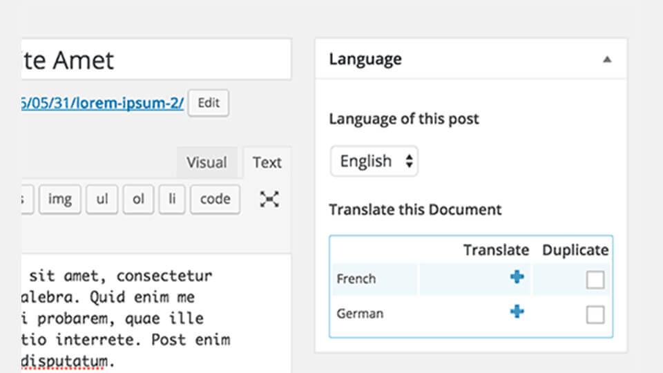 ویرایش پست با افزونه WPML