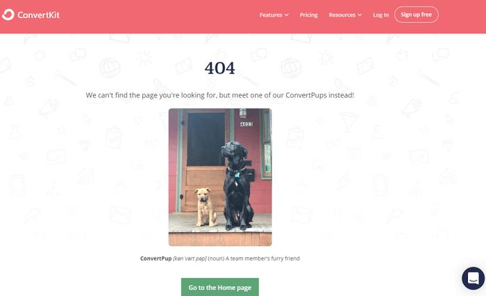 نمونه طراحی صفحه 404 ConvertKit