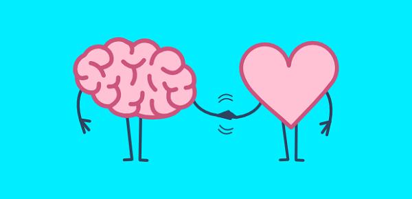 مغز و قلب