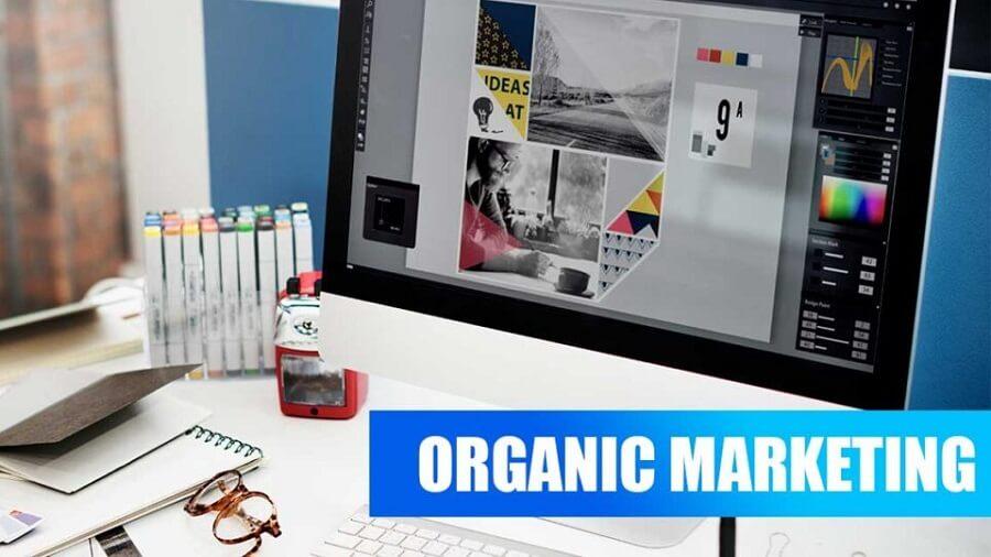 بازاریابی ارگانیک چیست؟